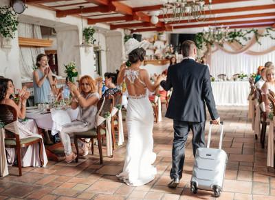 Свадьба Дмитрия и Валерии «Путешествие в страну Любви»!